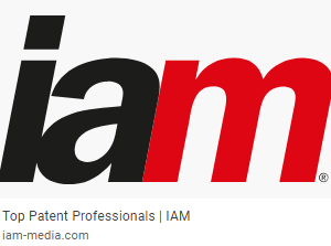 IAM Patent 1000 Ranks Rogowski as Leading Patent Professional